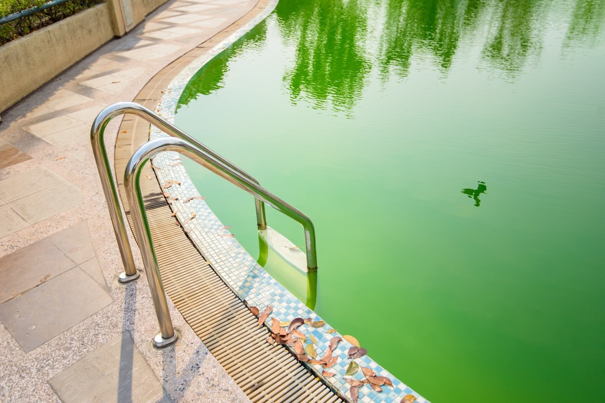 Ma piscine tourne au vert