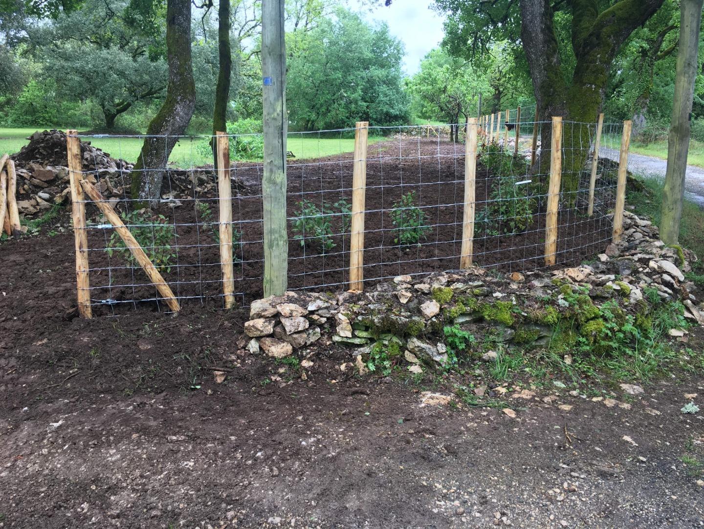 Pose de clôture par un professionnel
